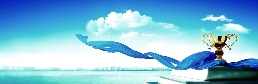 山东蓝领未来品牌运营管理有限公司