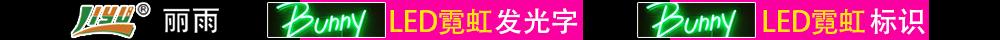 上海丽雨光电